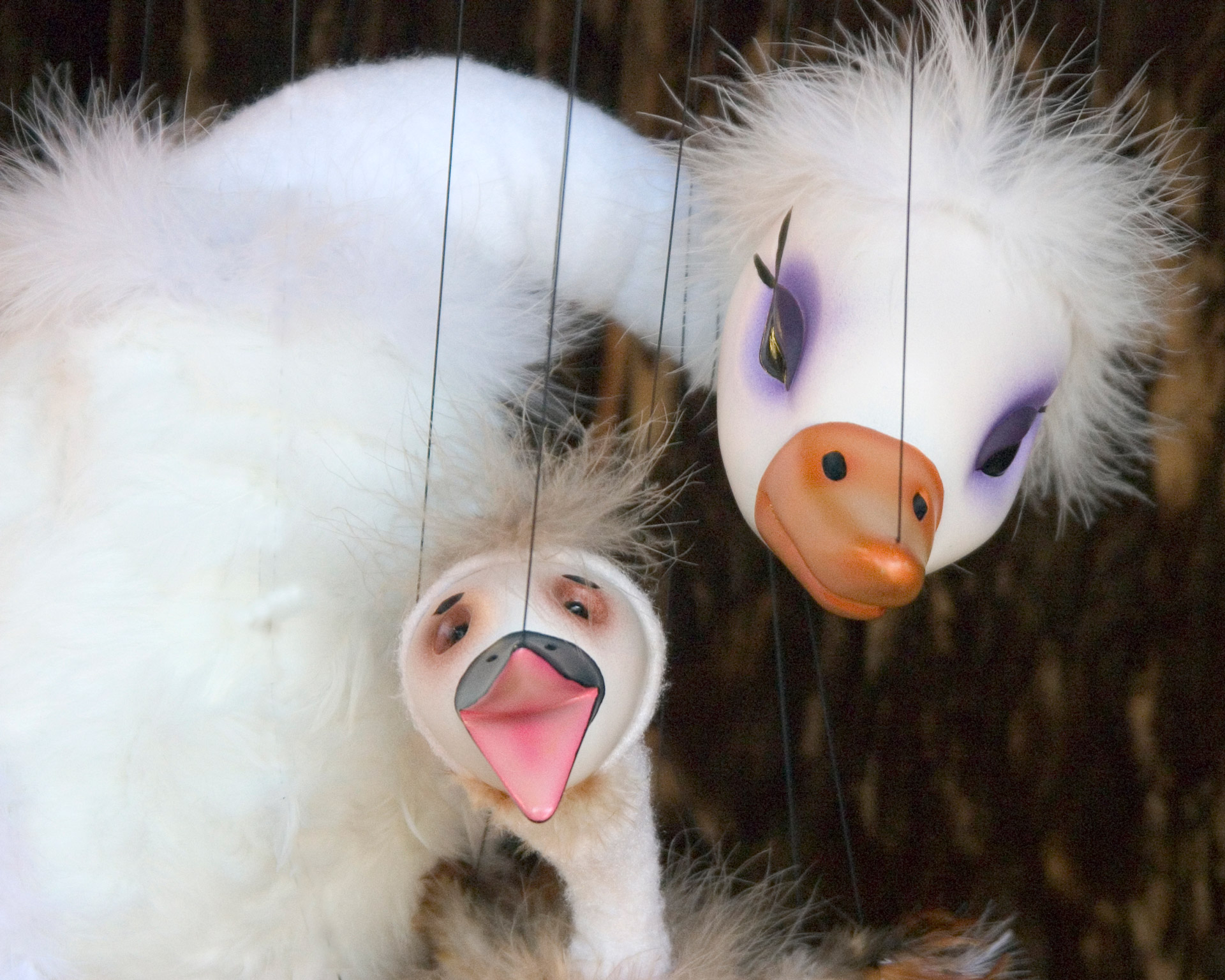 swan amp ugly duckling fratello marionettes